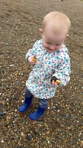 A2 collecting rocks and shells